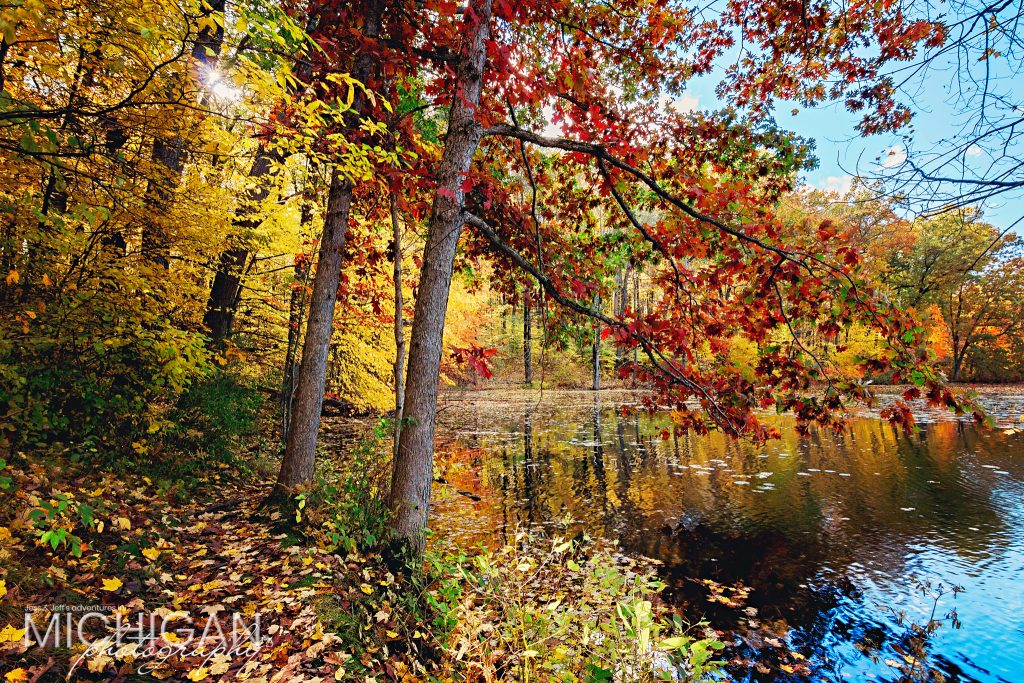 Reds, yellows, and greens surrounded by the peaceful waters of Wildwood Lake in Holly.