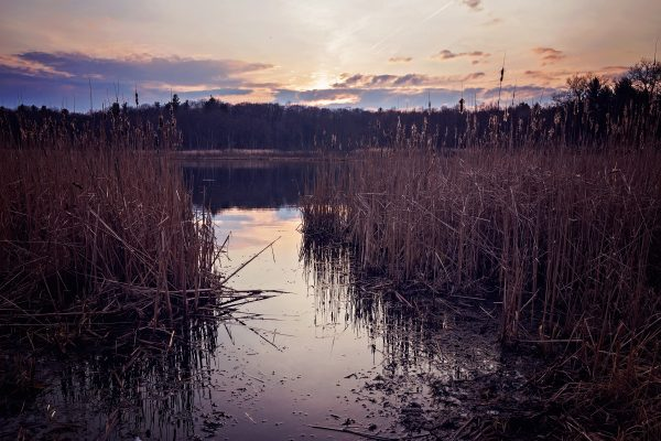 A gorgeous sunset over Heart Lake at Michigan's Bald Mountain State Recreation Area