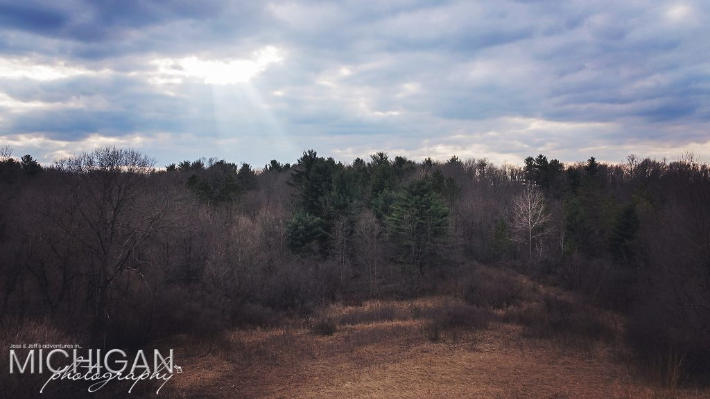 A hilltop view looking into the forests of Bald Mountain State Park.