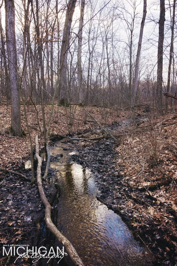 A small stream at Bald Mountain State Park.