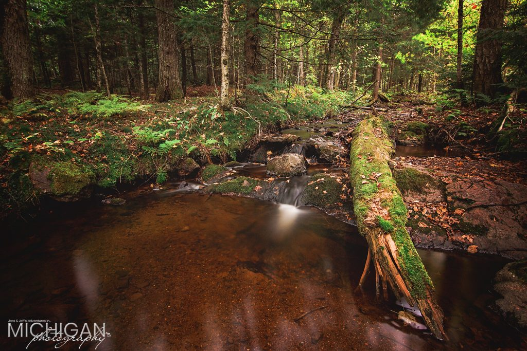 A small creek found on Pinkerton Trail in the Porcupine Mountains.