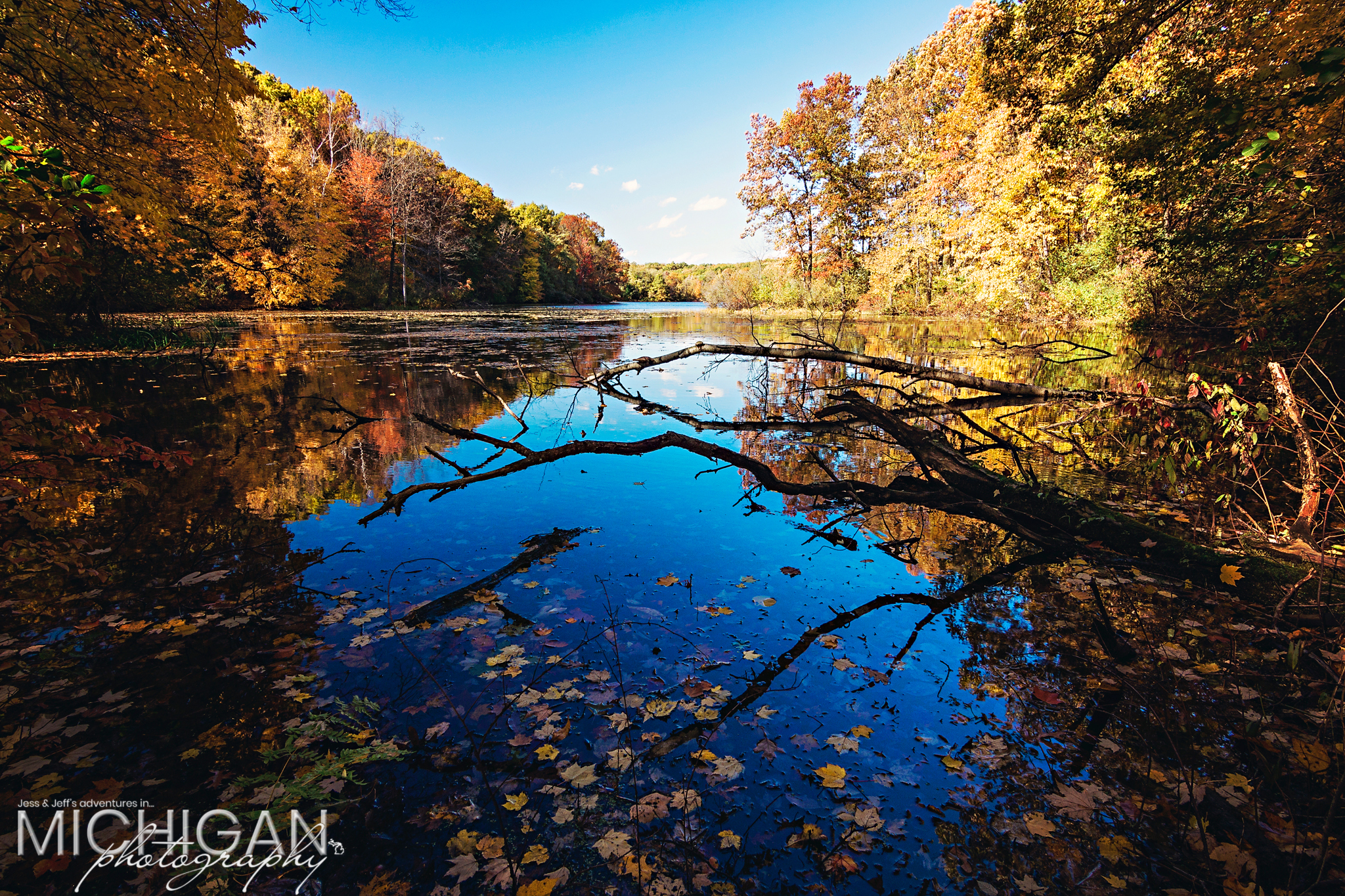Leaves fall into the water at Holly State Recreation Area