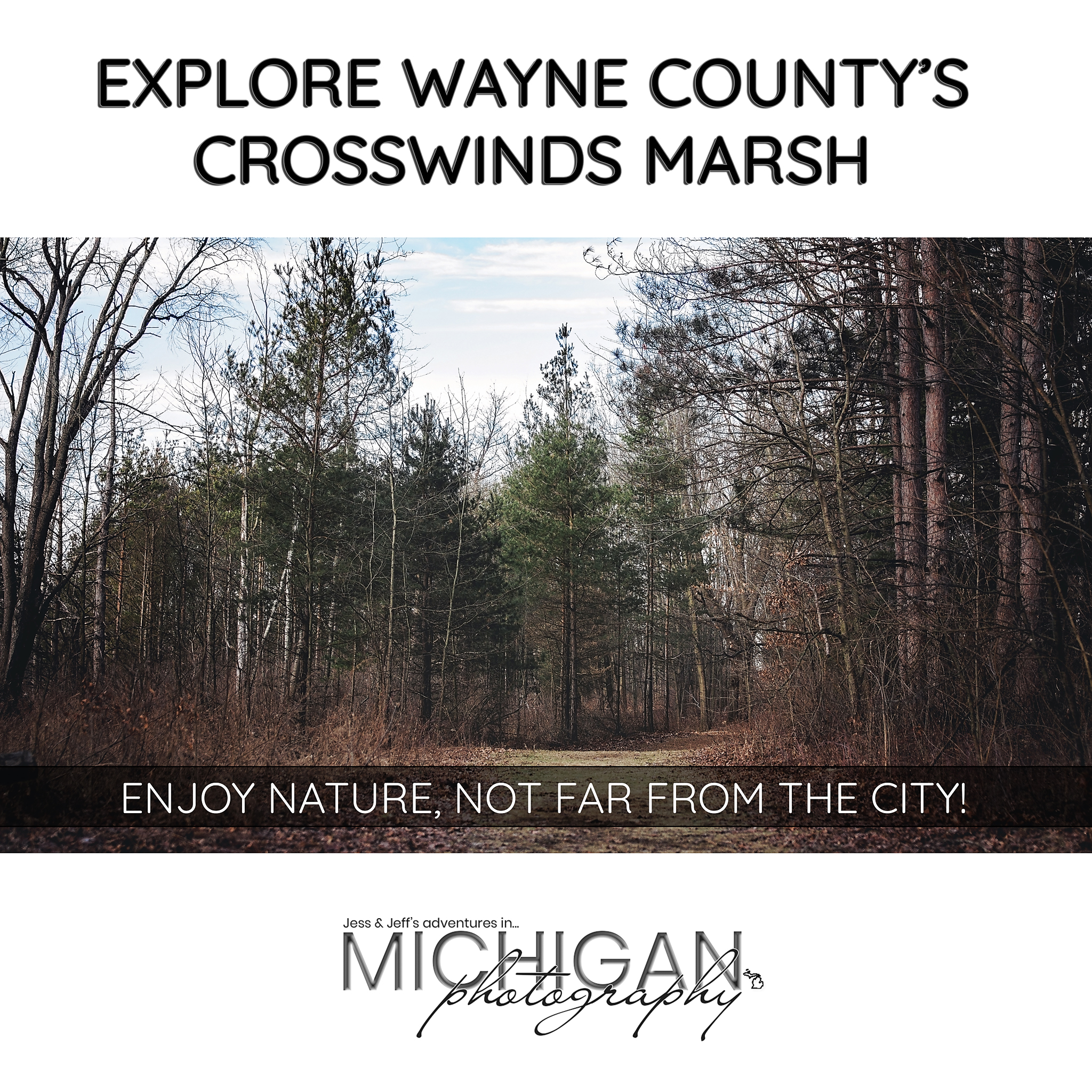 Crosswinds Marsh Park Featured Image
