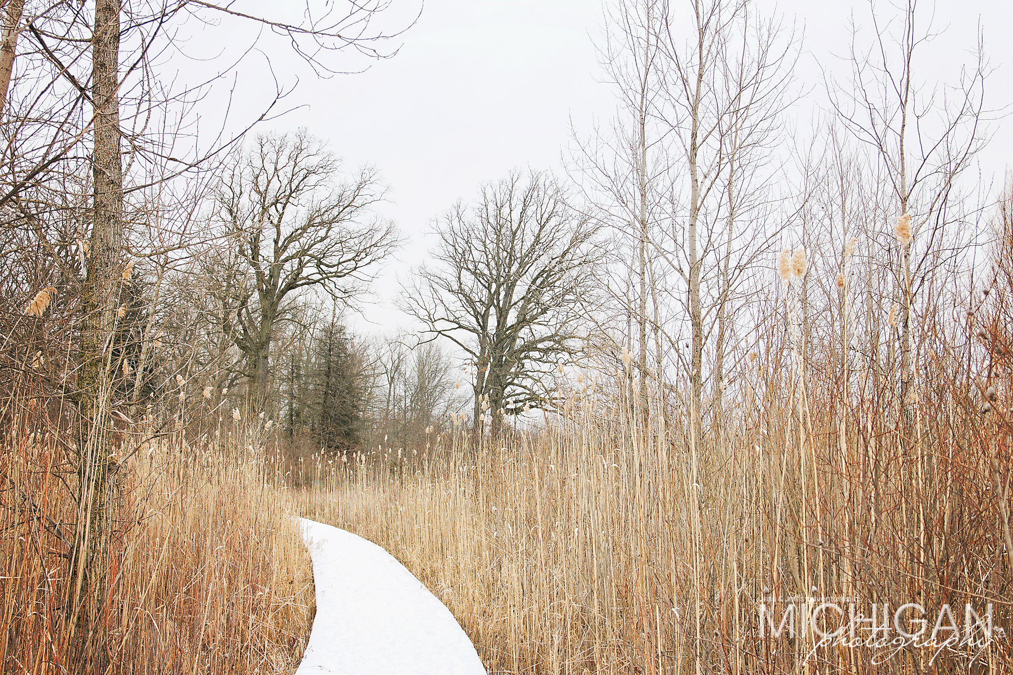 Snowy pathways at Crosswinds Marsh