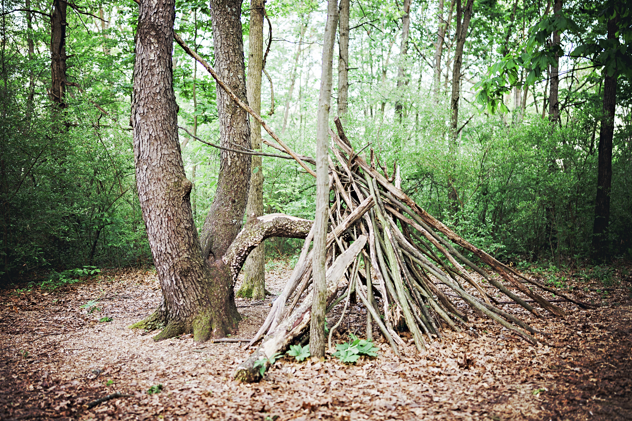 """A """"teepee"""" along the Natural Play Trail"""