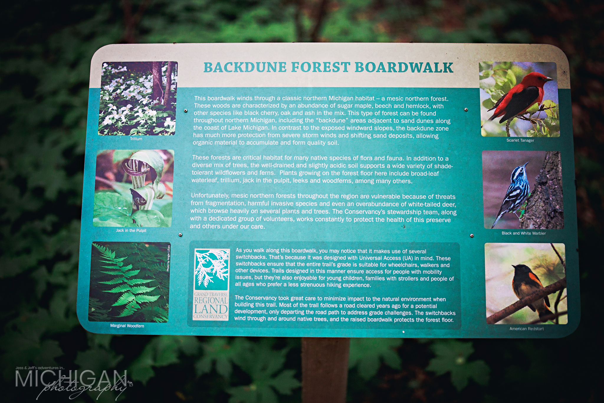 An informative sign on the Overlook Trail
